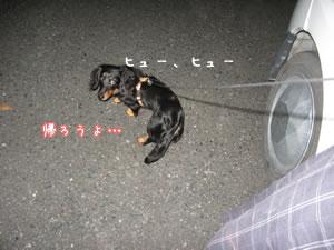 20070802_03.jpg