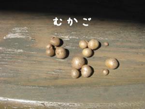 20070821_05.jpg