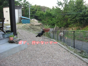 20070824_05.jpg
