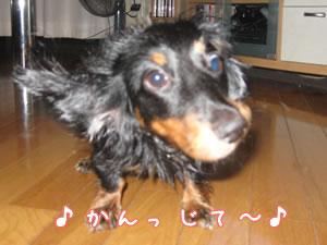 20070831_02.jpg
