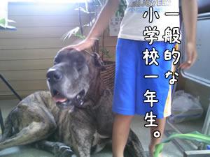 20070905_03.jpg