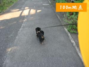20070910_02.jpg