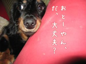 20070915_04.jpg