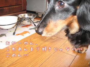 20070919_04.jpg