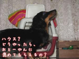 20070922_05.jpg