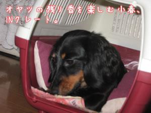 20070922_06.jpg