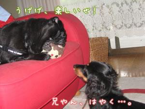 20070925_02.jpg