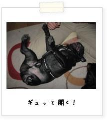 20070925_04.jpg
