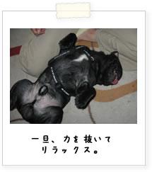 20070925_05.jpg