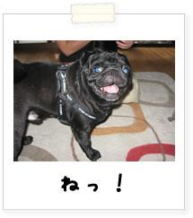 20070925_09.jpg