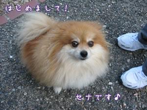 20071003_01.jpg