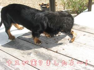 20071009_01.jpg