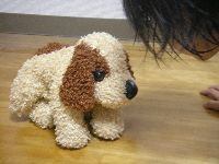 「面白がってフンをしてる姿を正面から見る」のは、犬にとっては面白くない行為らしいです。