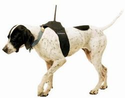 http://www.slashgear.com/gallery/data_files/1/4/6/garminastrodogtracker_small.jpg