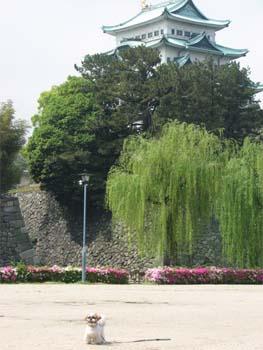 名古屋城と2ショット