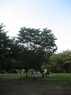 s-IMG_3433.jpg