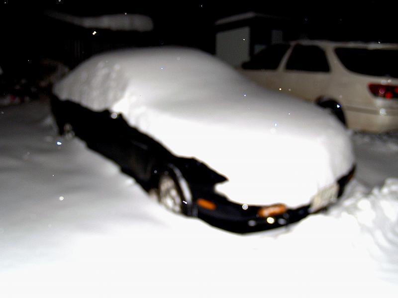 愛車に積もる雪