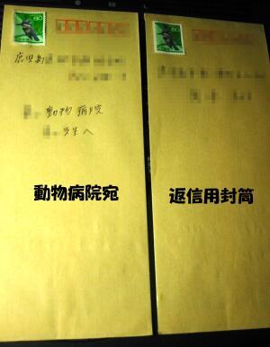 20061101012405.jpg