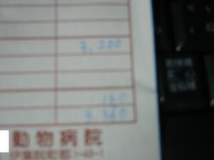 20061211024235.jpg