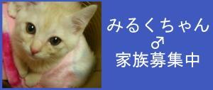 20061218005921.jpg