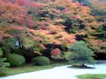 kyoto2.jpg.jpg