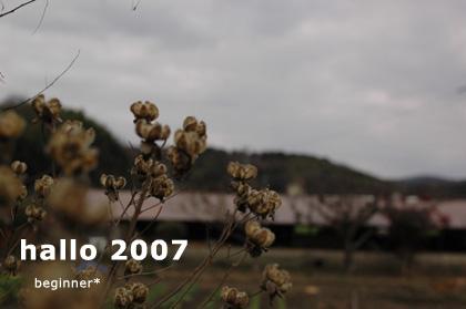 hallo2007.jpg