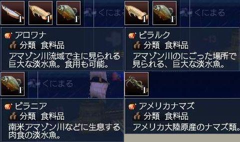 3-7アマゾン魚