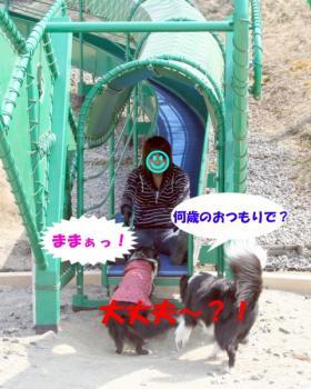 IMG_4547-1.jpg