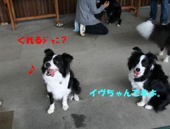 IMG_5267-1.jpg