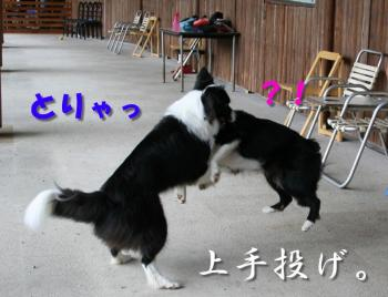 IMG_5322-1.jpg