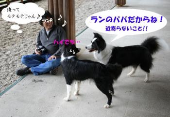 IMG_5363-1.jpg