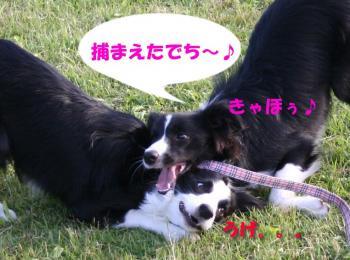 IMG_5689-1.jpg