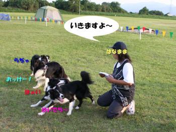 IMG_5710-1.jpg