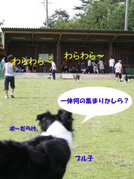 IMG_5722-1.jpg