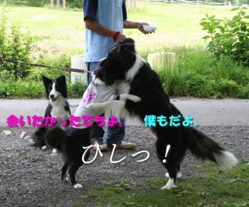 IMG_5981-1.jpg
