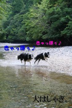 IMG_6895-1.jpg