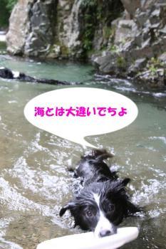IMG_6898-1.jpg
