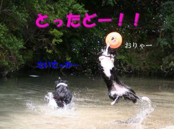 IMG_7110-1.jpg