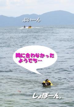 IMG_7602-1.jpg