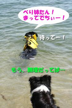 IMG_7604-1.jpg