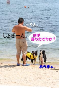 IMG_7705-1.jpg