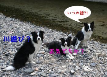 IMG_7898-1.jpg