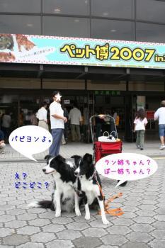 IMG_7971-1.jpg