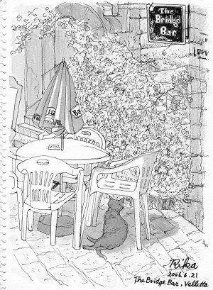 マルタの猫(ブリッジバーにて)