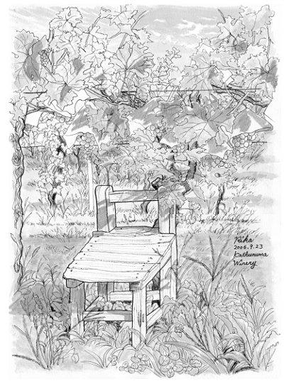 ぶどう園の休日
