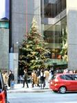 クリスマスツリーin銀座