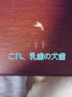 070123_1824~01.jpg