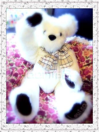bear1b.jpg