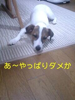 070710_2005~0001-0001.jpg