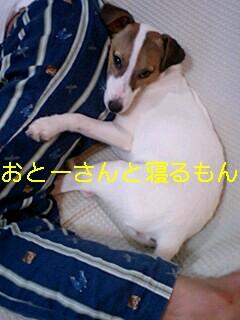 070830_2347~0001-0001.jpg